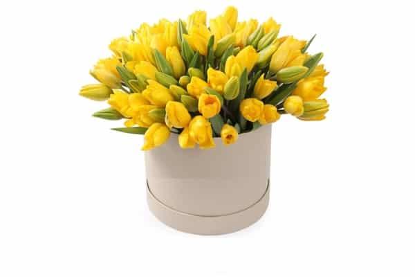 """Цветы в коробке """" Солнечный Зайчик"""""""